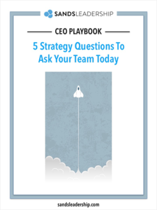 Ceo playbook